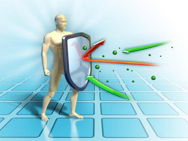 Иммунитет — это главный биологический инструмент